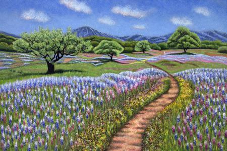 Wildflower Wonderland